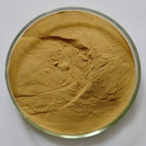 Supply Best Quality Black Ginger Extract