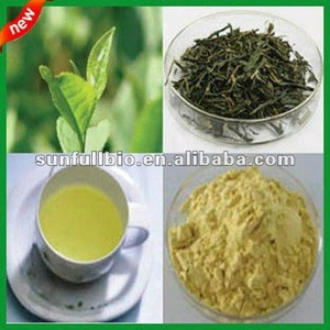 100% natural White Tea powder