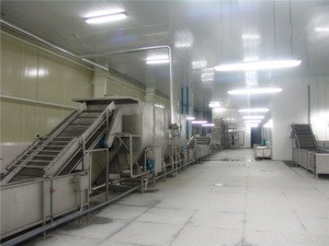 Automatic dried fruit chips production line auto dry fruits making machine drying plant equipment cheap price for sale