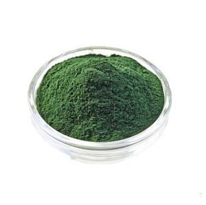 Bulk supply Green tea extract 500 mesh 1000mesh matcha powder on sale