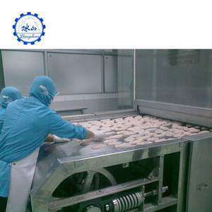 Dumplings quick iqf tunnel freezer for meatball freeze cold storage design room fast freezing quick cooler
