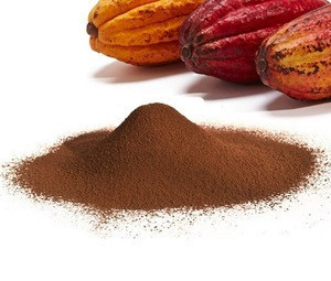 High Quality Organic Cacao Beans Powder at Factory Price