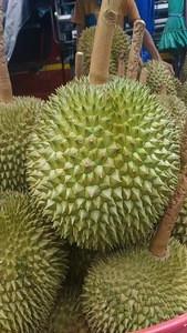 THAILAND FRESH DURIAN KAN YAO GRADE A