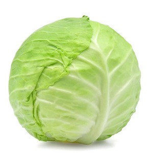 Top Quality Fresh Cabbages for sale