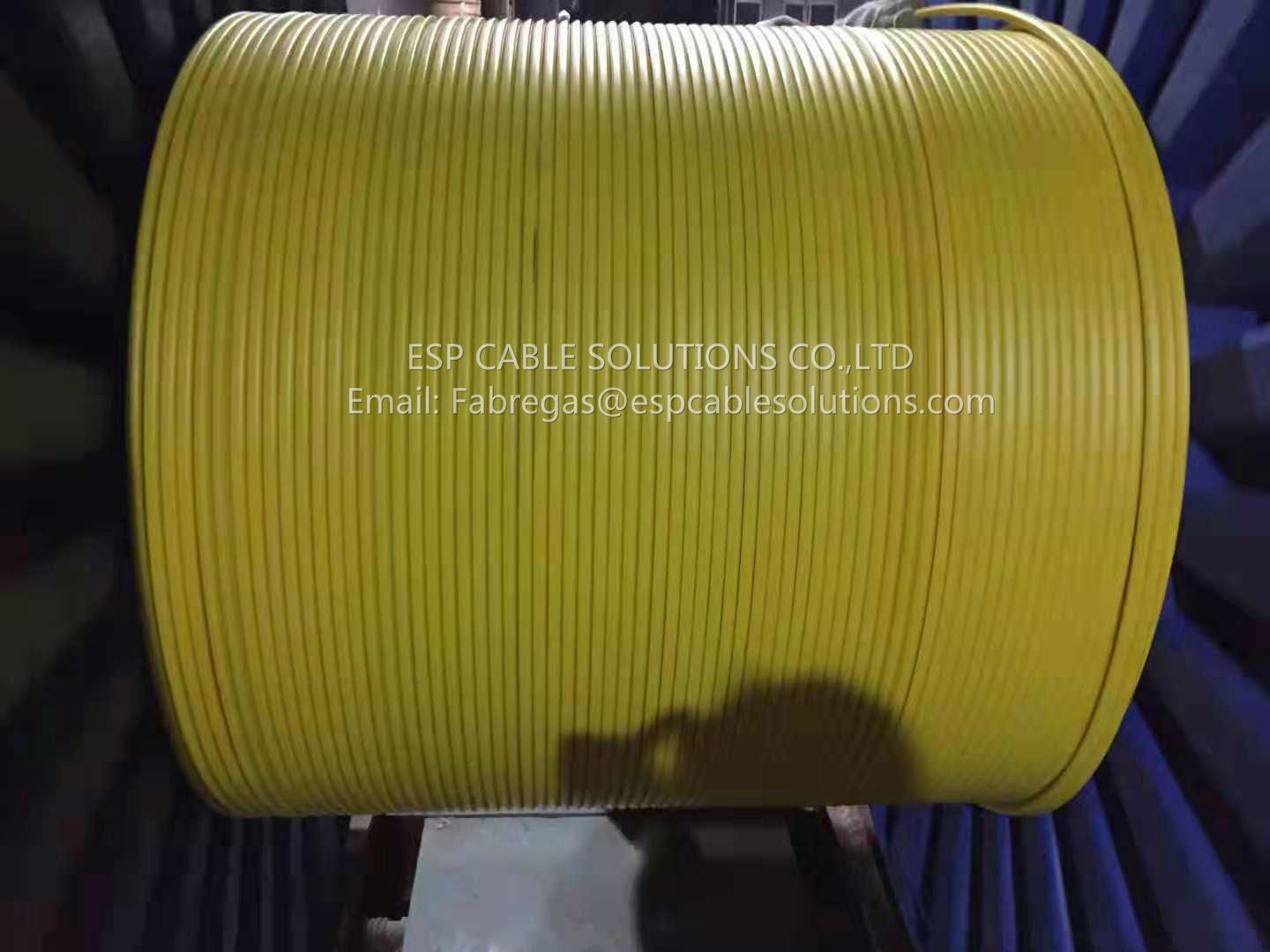 TEC Cable (Tubing Encapsulated Cable)