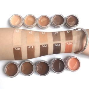 Cosmetics Makeup Organic Waterproof Tattoo Full Coverage Concealer