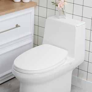 Toilet Seat_Slow Falling Colse_Hard_DO Simple Comfortable Type Plastic