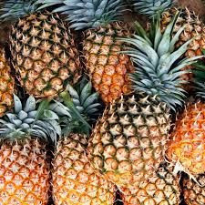 Fresh Pineapples/Fresh Fruits