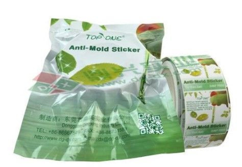 Anti Mold Chip in Roll