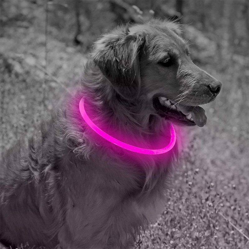 LED Pet Dog Necklace Light Collar Makes Your Dog Visible And Safe