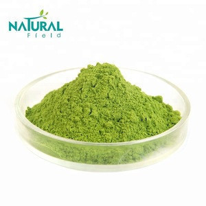 China suppliers Natural Field supply Best quality matcha green tea powder