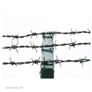 Crossed Wire Fence Galvanized Barbed Wire
