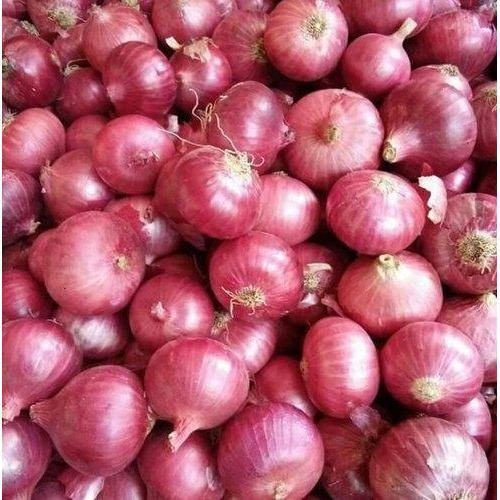 Fresh Indian Red Onions