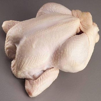 Halal Frozen Whole Chicken, Chicken Parts for Sale
