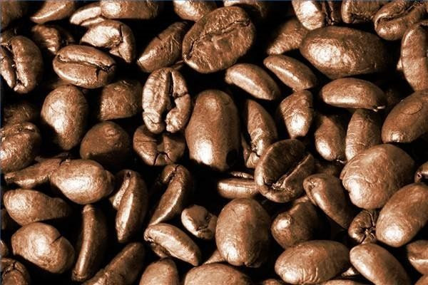 Wholesale Medium Roast Arabica Roasted Coffee Beans