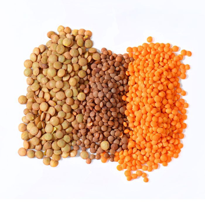 Top Quality Organic Green Lentils Wholesale Price