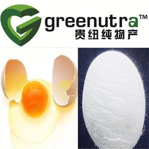 Hot sale egg; egg white protein powder