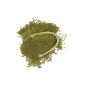 Wholesale Market Price Vigna Radiata Mong Beans