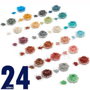 24 Mixed Color Supplies Powdered Pearl Pigments set  For Epoxy Colorant Hand Soap Making Slime Makeup