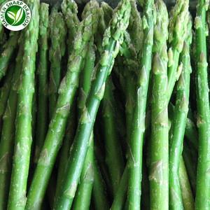 Defrost Frozen Fresh Green Asparagus For Sale