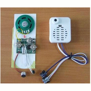 Voice record and playback circuit, digital voice recorder with playback