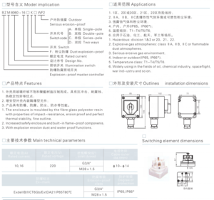 BZM8060 series Explosion&Corrosion Proof Light Switch Explosion Proof RotarySwitch for Hazardous  IIB IIC IP65