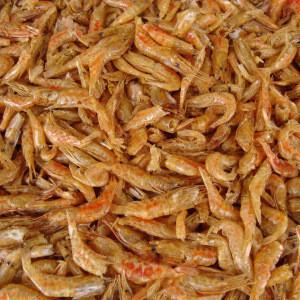 Dried River Shrimp for aquarium