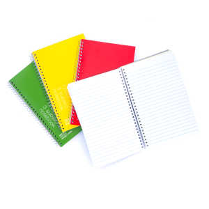 5.75 x 9 Inch Subject Spiral Notebook, Wide Ruled, 120 Sheets