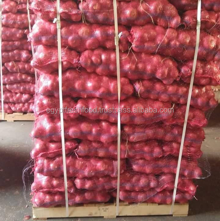 Fresh Onion for Export To Dubai