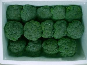 Frozen Broccoli/fresh Broccoli