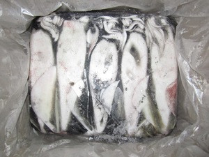 Loligo squid whole size 10/20, 20/40, 40/60, 60/80, 80/UP