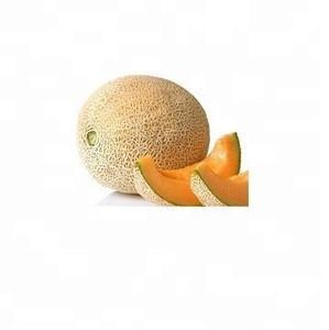 Orange Fresh Muskmelon Fresh Melon for sale