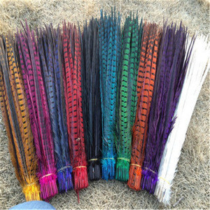 Ringneck Pheasant Tail Feathers , bleached ,Dyed Ringneck pheasant tail feathers