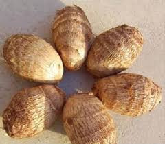 THE MOST COMPETITIVE PRICE OF IQF FRESH TARO