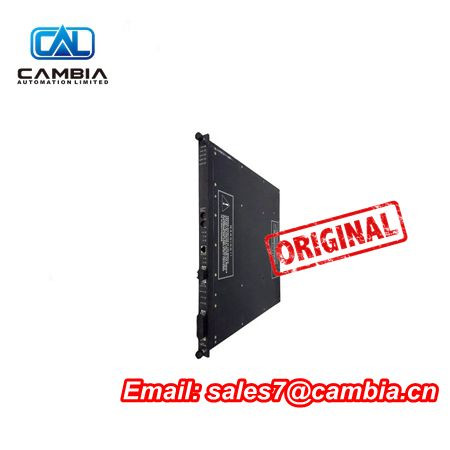 TRICONEX7400169-310