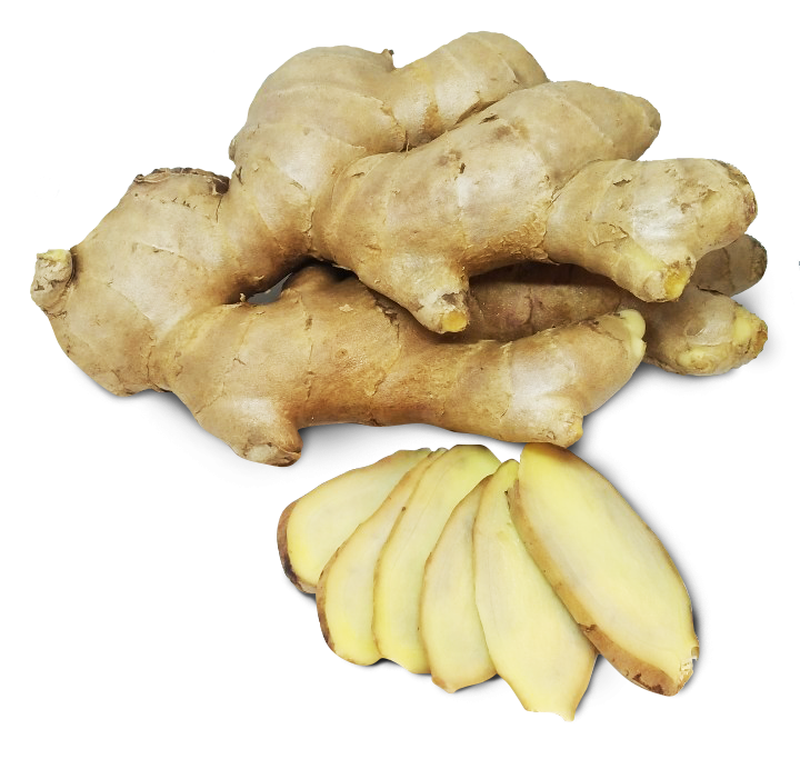 Good Quality Wholesale Price from Thailand Exporters Fresh Ginger