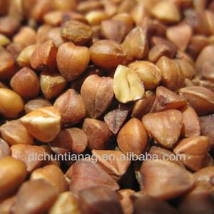 Rorganic oasted buckwheat kernel