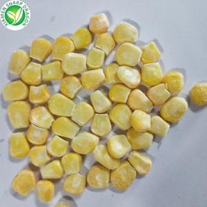 Yellow bulk sweet iqf frozen whole kernel corn