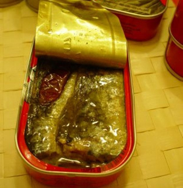 Canned Sardine  / Tuna / Mackerel