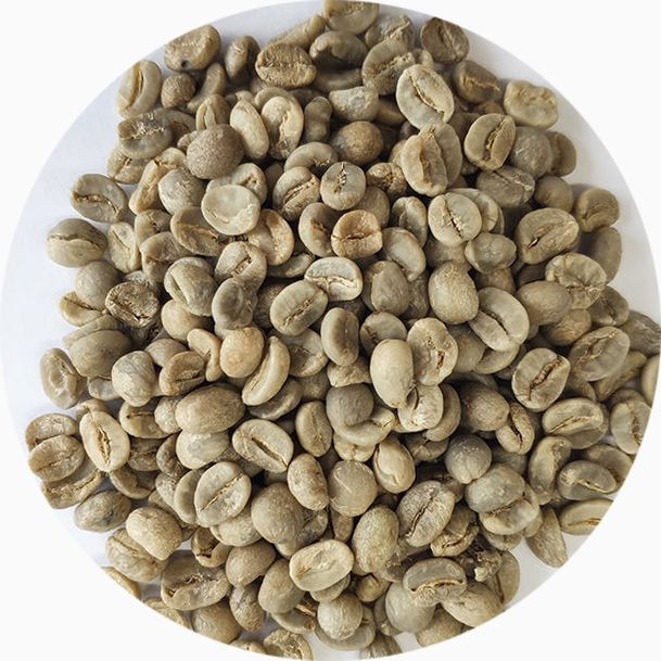 Wholesale AA Arabica Coffee Beans Washed and Dried Yunnan Arabica Green Coffee Beans