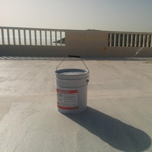 Rooftop Waterproofing Coating