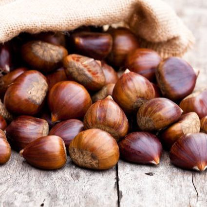 Horse Chestnuts, Roasted Chestnuts, Fresh Chest Nuts, Brazilnuts