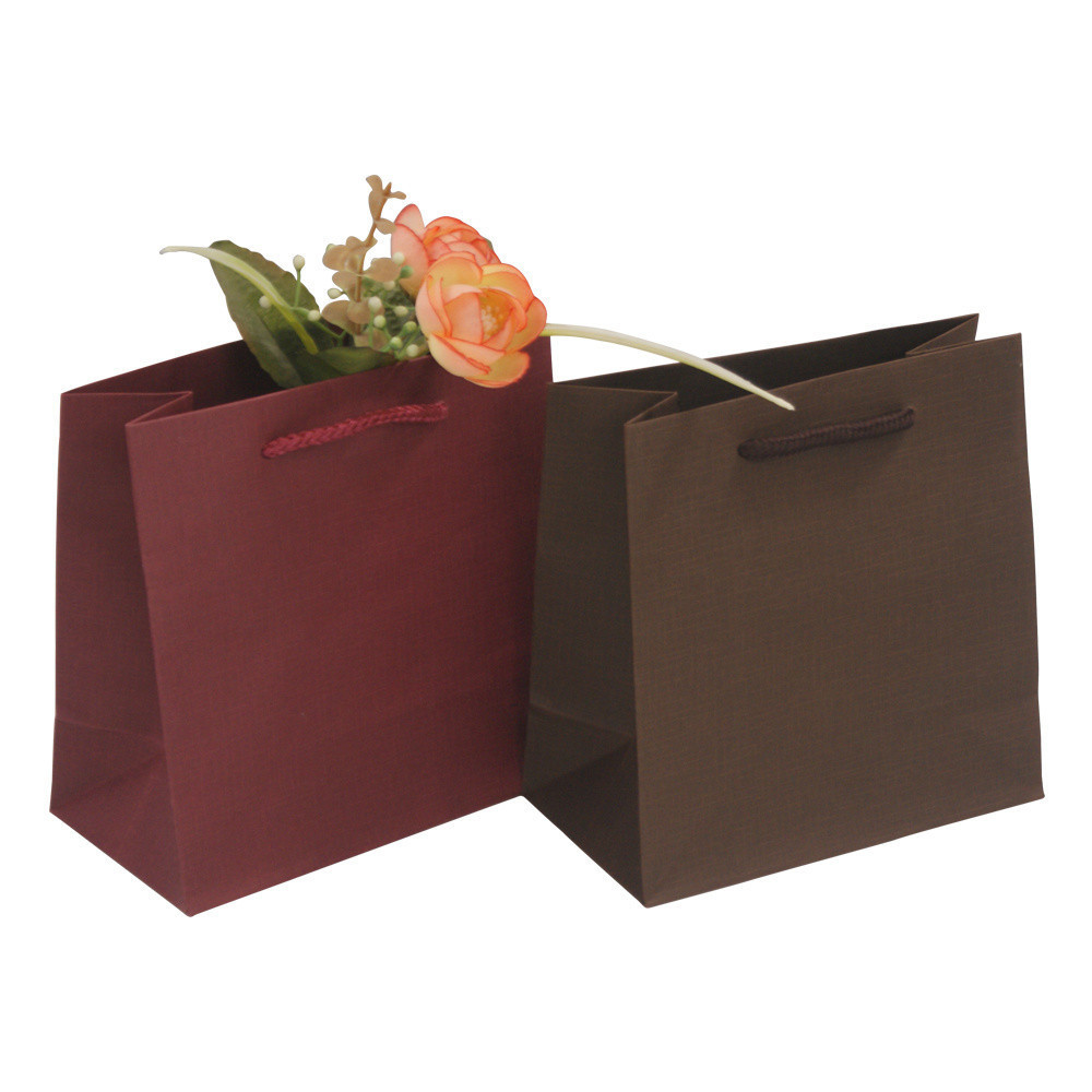 New Plain Special Fashionable High Quality Paper Shopping Gift Bag