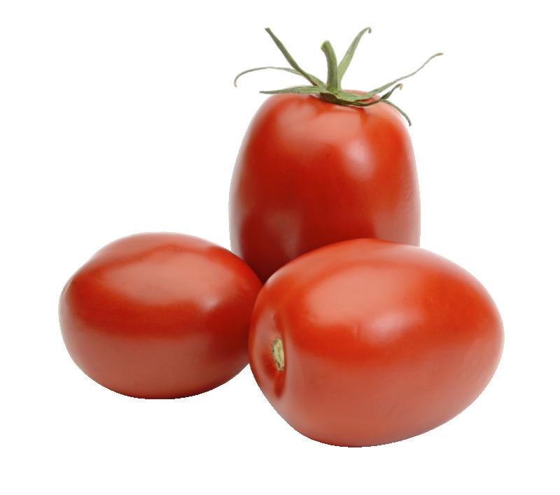 Fresh Elongated Mediterranean Tomatoes