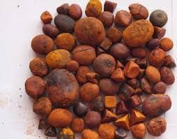 100% whole Grade A Ox Gallstones