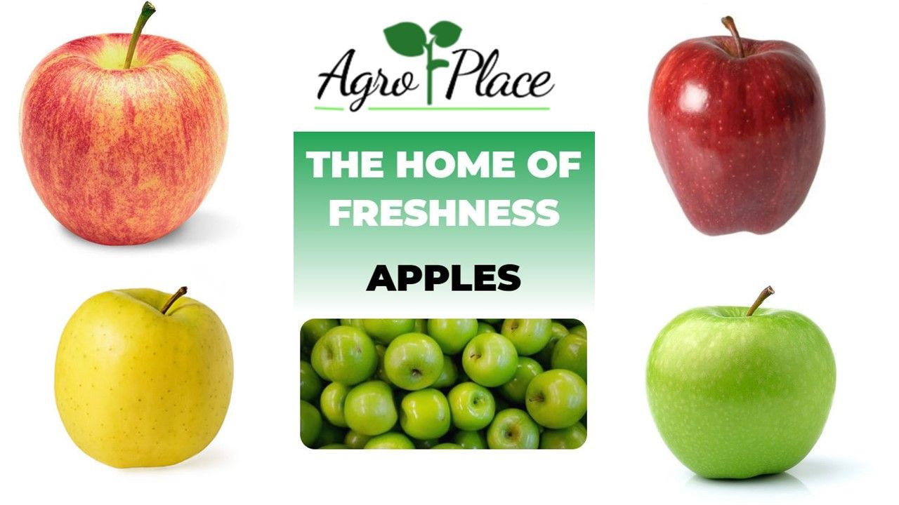 AgroPlace SRL