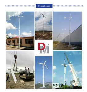 Home Wind Turbine Generator Windmill with CE 1KW24V/48V/96V