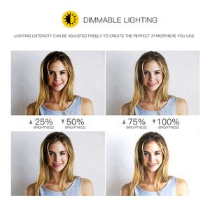 R18b Makeup 3200-5600K Photography LED Lamp 18 Inch Selfie Portable Flash Camera Ringlight lamp