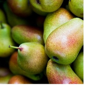 Wholesale Fresh Pear For Sale
