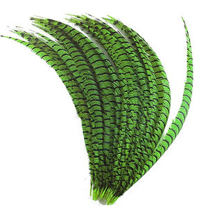 Wholesale Pheasant Feather Natural Plumas de Faisan